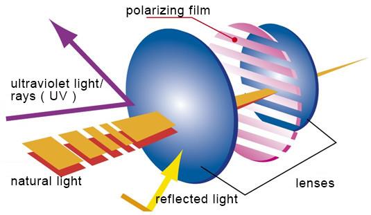 polarizedlens_001_en