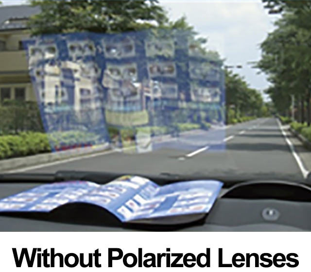 without Polarized Lenses